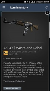 AK-47 | Wasteland Rebel (Covert Rifle)