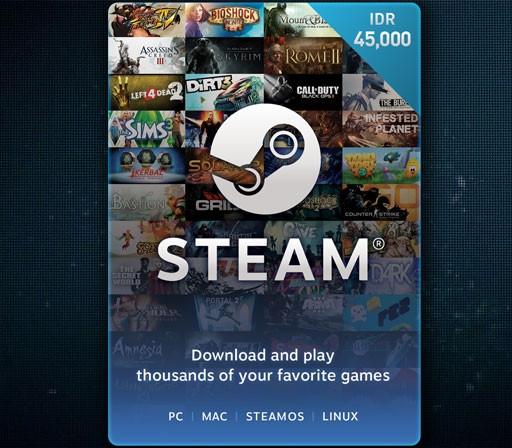 Steam Wallet Code - IDR 45.000